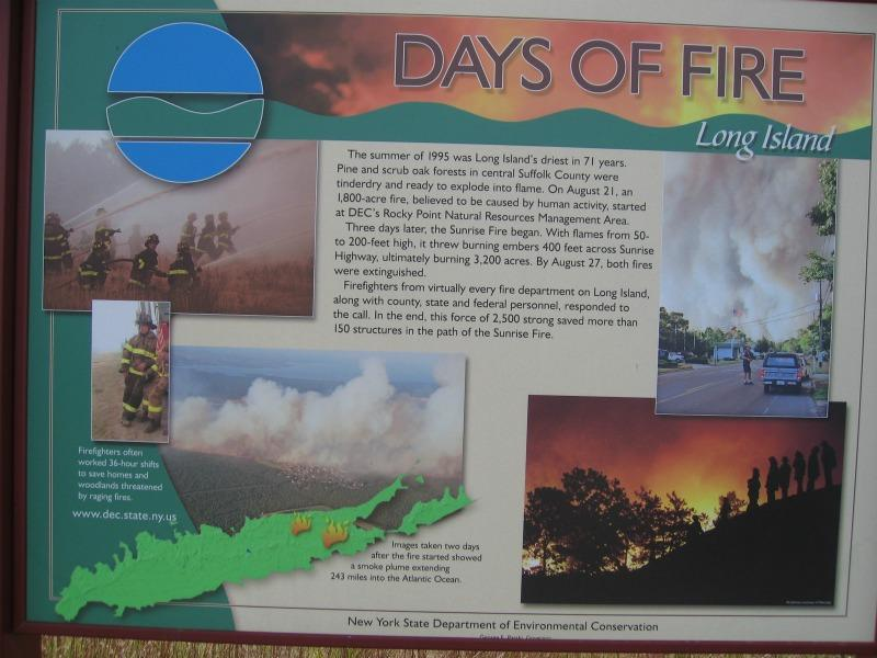 Dwarf Pine  Plains  Preserve Sunrise Fire sign In the Long Island Central Pine Barrens Gregory J. Edinger