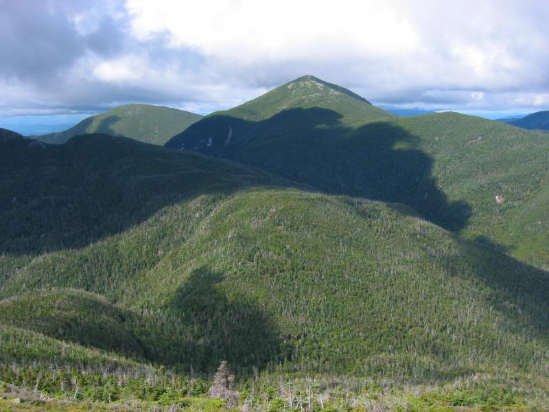 Mount Marcy from Basin Mountain showing extensive mountain spruce-fir forest Tim Howard