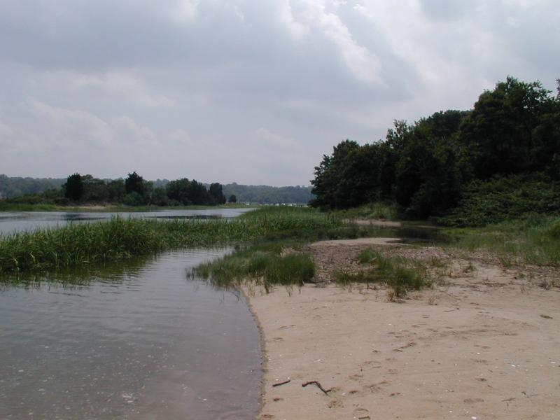 Tidal River and beach at Nissequogue River State Park Troy Weldy