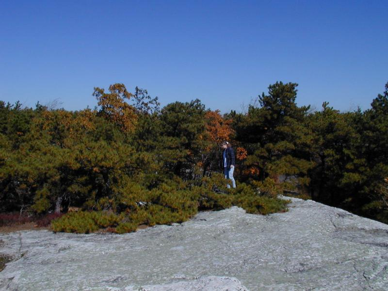 Heidi Krahling in dwarf pine ridges at Minnewaska State Park in the Shawangunk Mountains Troy Weldy