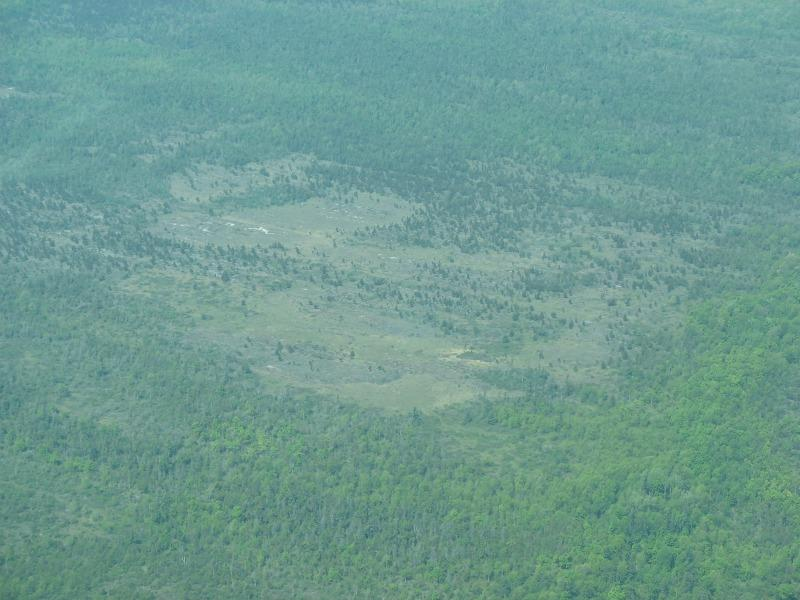 Air photo of Chaumont Barrens in Jefferson Co., NY.