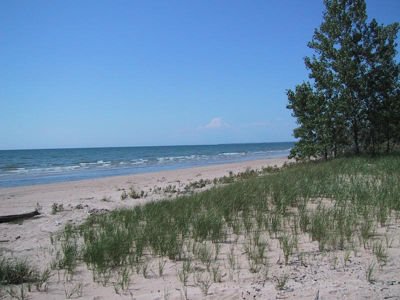 Great Lakes dunes Adele M. Olivero