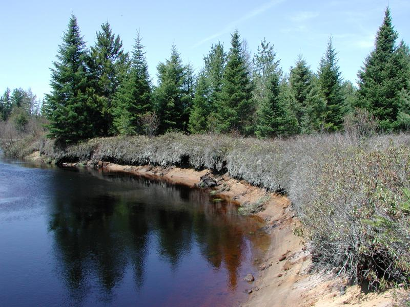 The Jordon River and the edge of boreal heath barrens at Raquette Boreal Forest Shane Gebauer