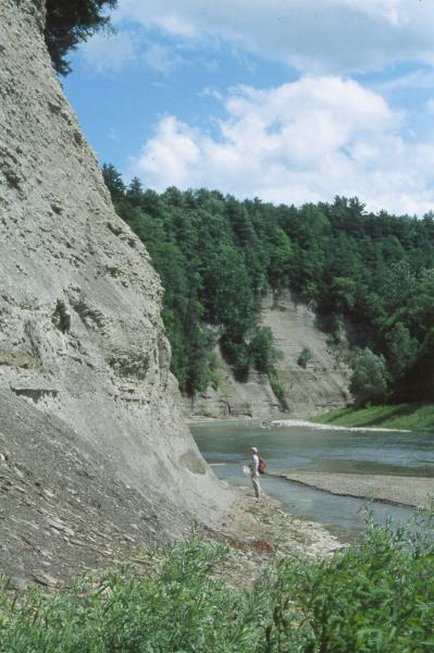 Shale cliff and talus community, Zoar Valley, rocky headwater stream Paul Novak