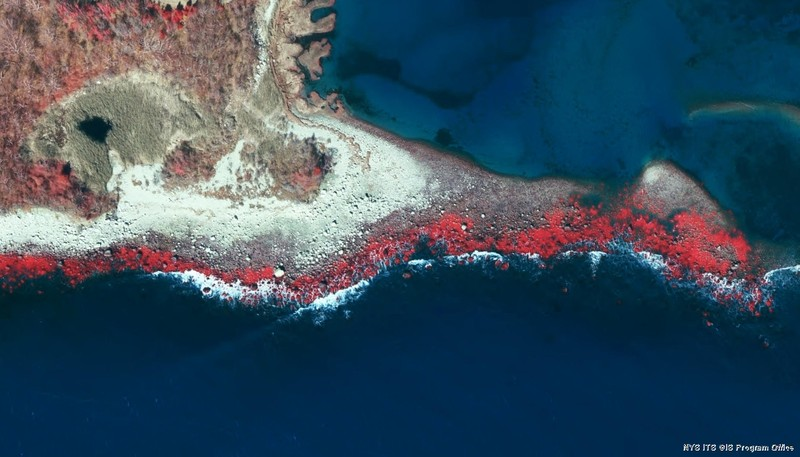 Color infrared air photo showing marine rocky intertidal community on Fishers Island. Bright red depicts marine algae on rocks. NYS CIR orthoimagery from Spring 2016.